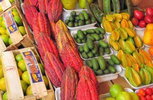 Lima gourmet 4