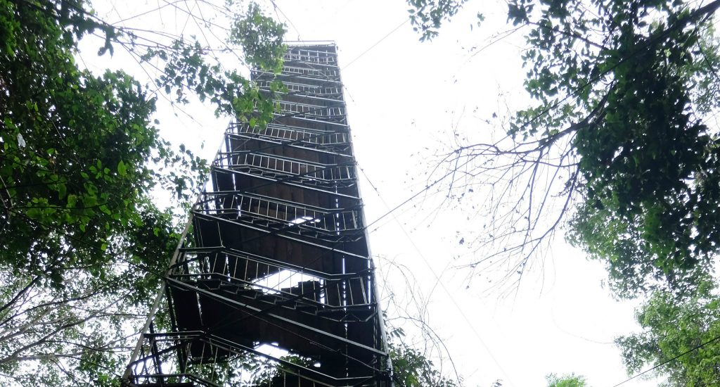 & Canopy Tower : Peru Holiday Architects